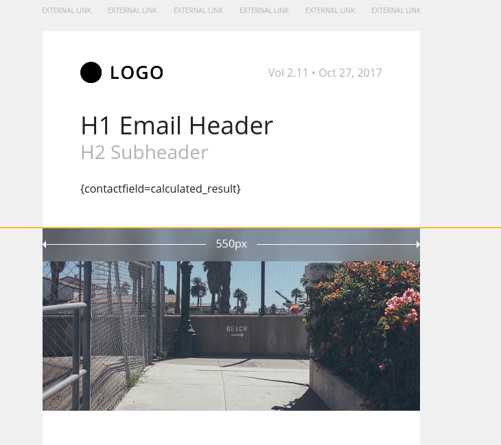 dynamic field in email